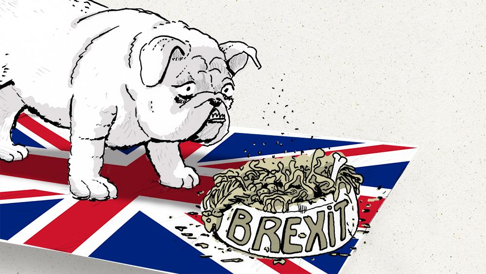 brexit_ii_cut