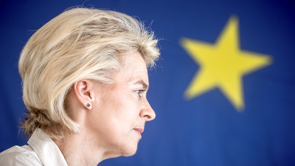 Von der Leyen Is in Trouble